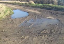 Muddy February Lane 4