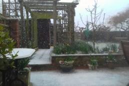 Snowy February garden 3