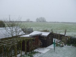 Snowy February garden and field