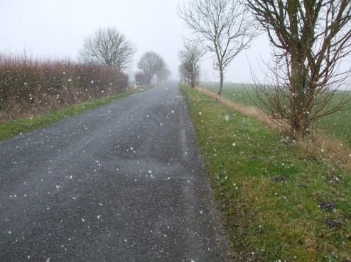 Snowy February lane