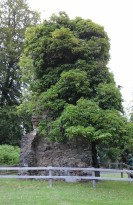 Section of old Achnacarry Castle