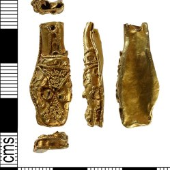 Complete early medieval gold terminal mount in the form o an animal's head. Found in Norfolk and dated 800-900. Photographer Norfolk county Council, Gary Crace, 2016