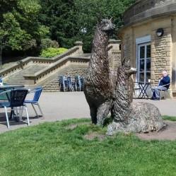 Alpaca statues in Robert's Park