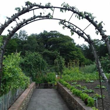Gardens 3 +