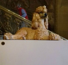 Poodle Sculpture in the Painted Hall 2