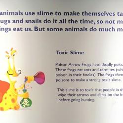 Toxic Slime