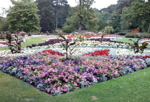 Flower beds 2016