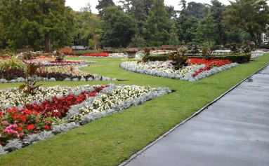 Flower beds in Botanic 2016