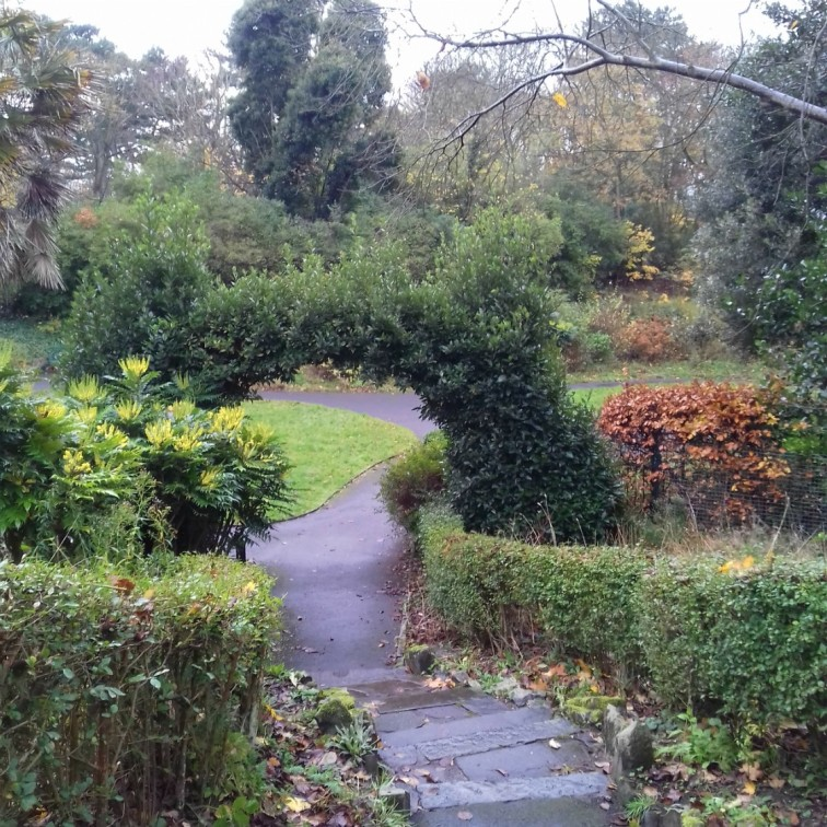 Paths and steps in Hesketh Park November 2019