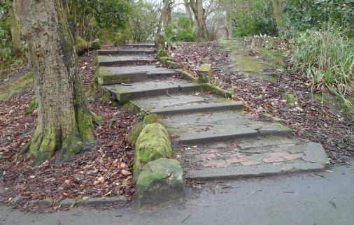 Steps in Botanic Feb 2017